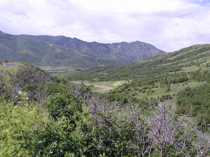Parleys Nature Park Utah